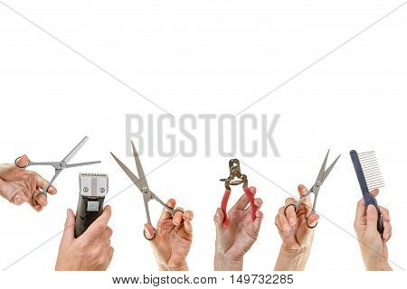 Hands holding a variety of equipment for pets grooming are isolated on the white background. All potential trademarks are removed.