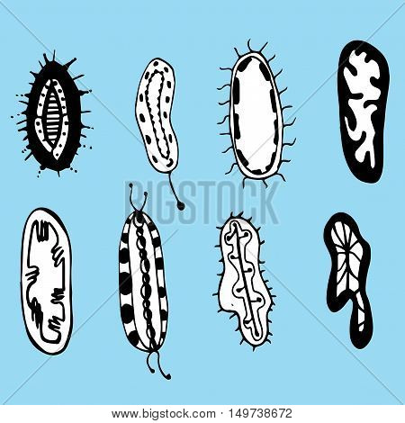 Bacteria. Cells. Microorganisms Under A Microscope. Dirty Surface. Virus. Background.