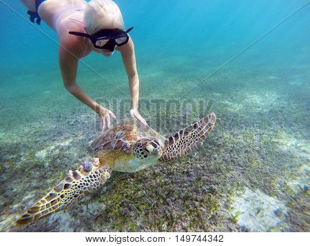 Mexican Sea Turtle underwater swimming with a girl