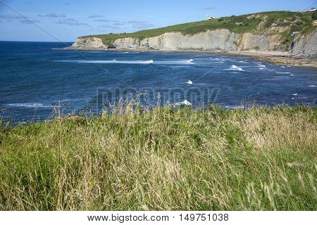 Photo of a typical Asturian landscape with with sea, grass and sunlight