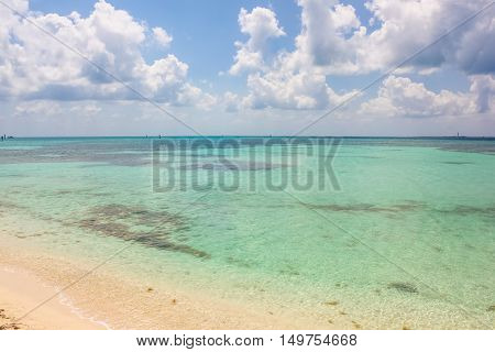 Tropical blue waters, coral reefs and marine life in Dry Tortugas National Park, Florida.The Dry Tortugas are a small group of islands, located in the Gulf of Mexico at the end of the Florida Keys.