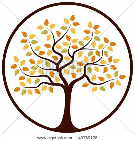 vector autumn tree in round isolated on white background