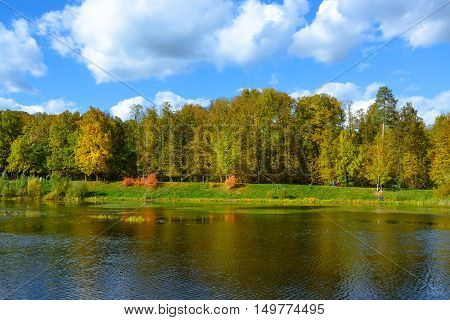 Nice park with pond in autumn. Autumn lanscape. Nature view.