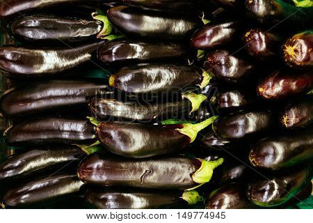Fresh aubergines - eggplants background. Health food concept