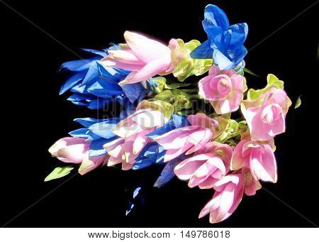 Bouquet of Curcuma flowers in Or Yehuda Israel October 19 2007