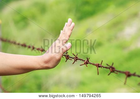 Hands Hanging On Old Metal Rusty Barbed Wire.