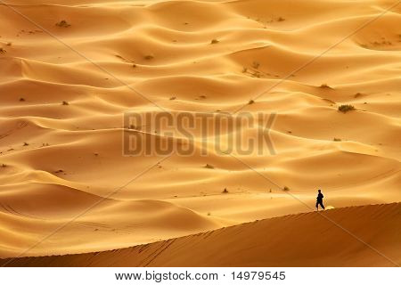 Lost in Sahara Desert