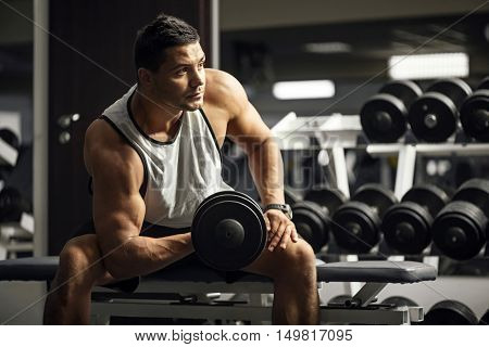 Physical strength. Young good looking serious athlete lifting a dumbbell and focusing on the activity while sitting on a gym apparatus
