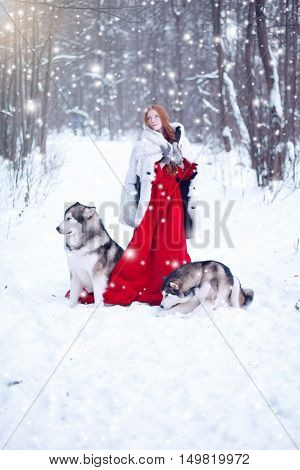 Beautiful Girl In Sheepskin Coat With The Dogs.