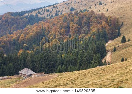 Abandoned farmhouse at the forest edge, in autumn
