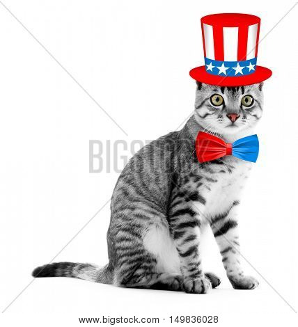 Cute cat with Uncle Sam hat and bow-tie on white background. USA holiday concept.