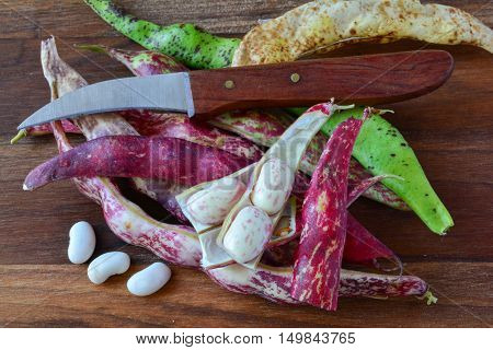 Pots and grains of young organic red and colorful beans on dark wooden background with knife for vegetables