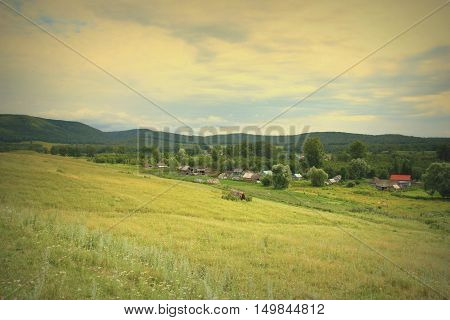 Beautiful Summer Village Landscape