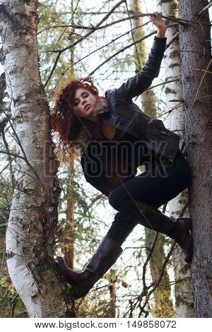 Pretty girl in boots with curly hair poses on old fir-tree in forest