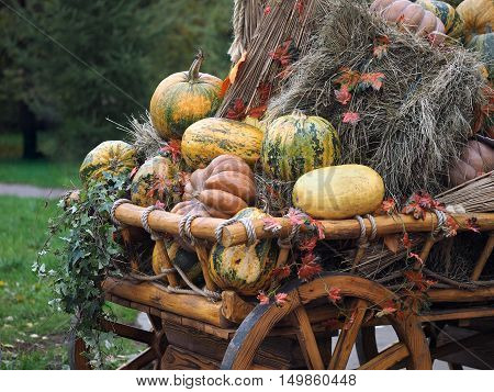 Pumpkins and sheaves of hay in a rustic cart. Concept - fall farm harvest festival