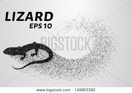 Lizard of particles. Silhouette of a lizard is of little circles.