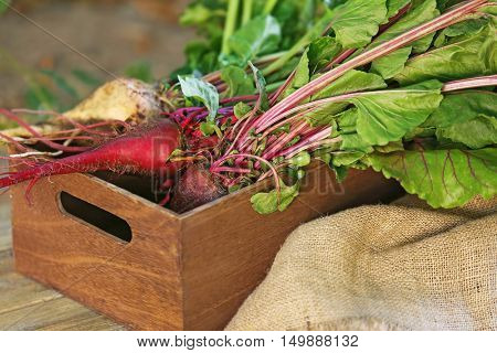 Young beets in wooden box and bagging