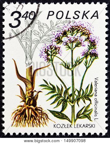 POLAND - CIRCA 1980: A stamp printed in Poland from the