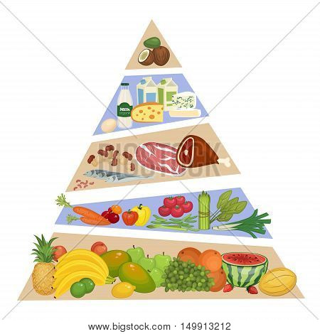 Food pyramid concept. Fruits, vegetables, meat and fish, dairy products vector illustrations in order of importance. Food symbols. Components of recommended ration. For healthy nutrition illustrating. Food pyramid vector isolated. Food chain.