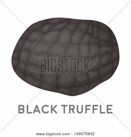 Black truffles icon in cartoon style isolated on white background. Mushroom symbol vector illustration.