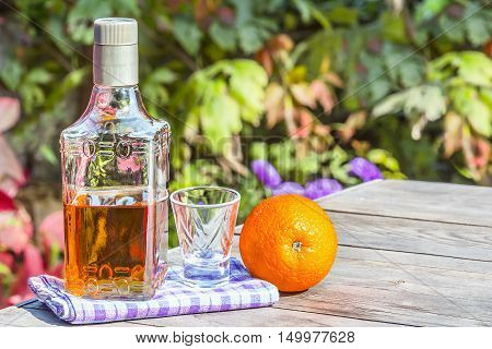 Bottle tequila with shot and the orange on the old tabel in autumn garden's