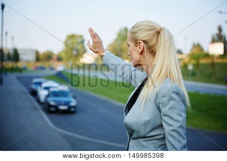 Back portrait of businesswoman catching taxi on the street