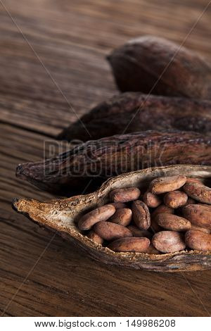 Cocoa pod and cocoa beans on the wooden table