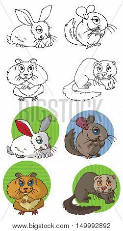 illustration on white background in circle Pets rodents: ferret hamster rabbit and chinchilla