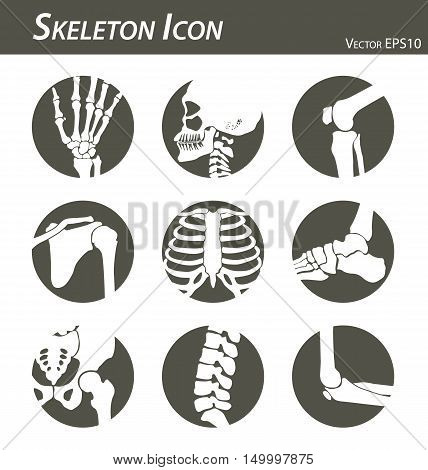 Skeleton icon ( hand, finger , wrist , head , neck , thigh , knee , leg , shoulder , arm , forearm , thorax , ankle , foot , pelvis , hip , backbone ( vertebrae ) , elbow ) black and white , flat design