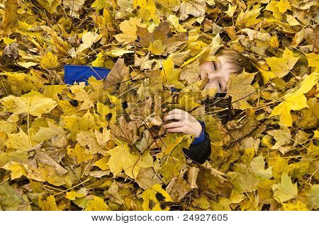 young boy in leaves