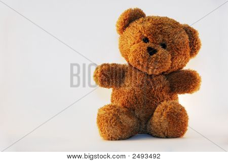 Teddy Bear On White