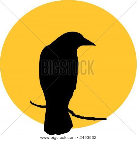 Raven_Sun.Eps