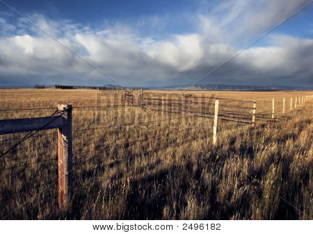 Fenced Prairie