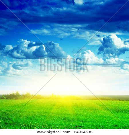 Green field,sky and sun.