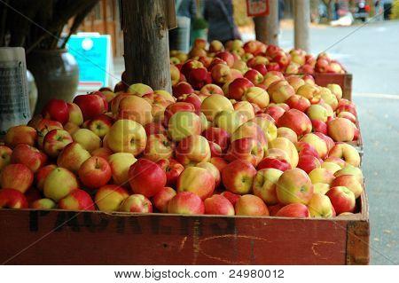Apple Goodness