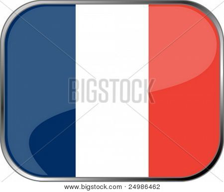 France flag icon with official coloring