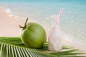 Coconut Juice,drink Coconut Water On Coconut Leaf poster
