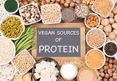 Protein in vegan diet. Vegan sources of protein poster