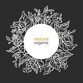 Vector Nature Ornament In Circle, Floral Template, Elegance Banner Coffee Branch, Leaves, Flower, Na poster