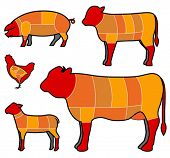 image of veal meat  - cutting meat - JPG