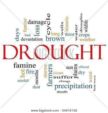 Drought Word Cloud Concept