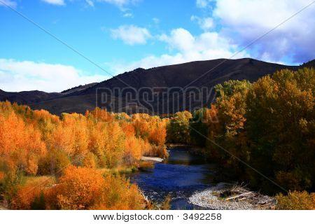 Wood River Autumn