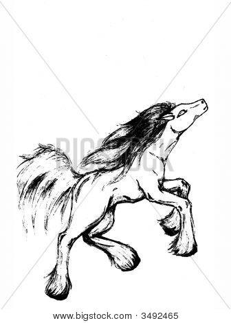 ringelwurm Pferd