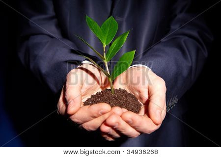 Unrecognizable person in formal suit holding a handful of soil with a sprout