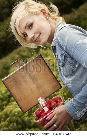 Attractive blonde woman holding up large a ripe red strawberry in her fingers from a punnet full that she is holding outdoors in sunshine