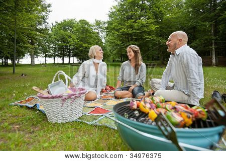 Caucasian group of friends in park with a bbq picnic