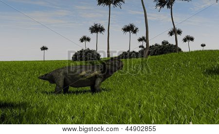 lystrosaurus in grass field