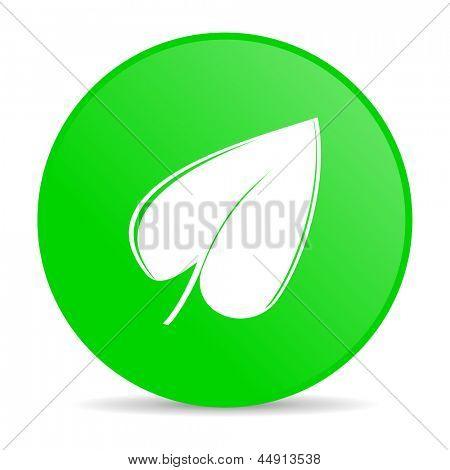 leaf green circle web glossy icon