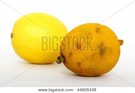 Stale And Fresh Lemon