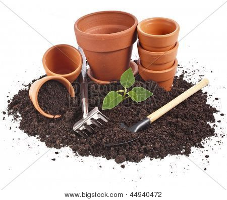 gardening tools and seedling in soil surface  isolated on a white background